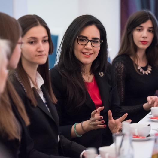 European Diplomacy Workshop – online webinar