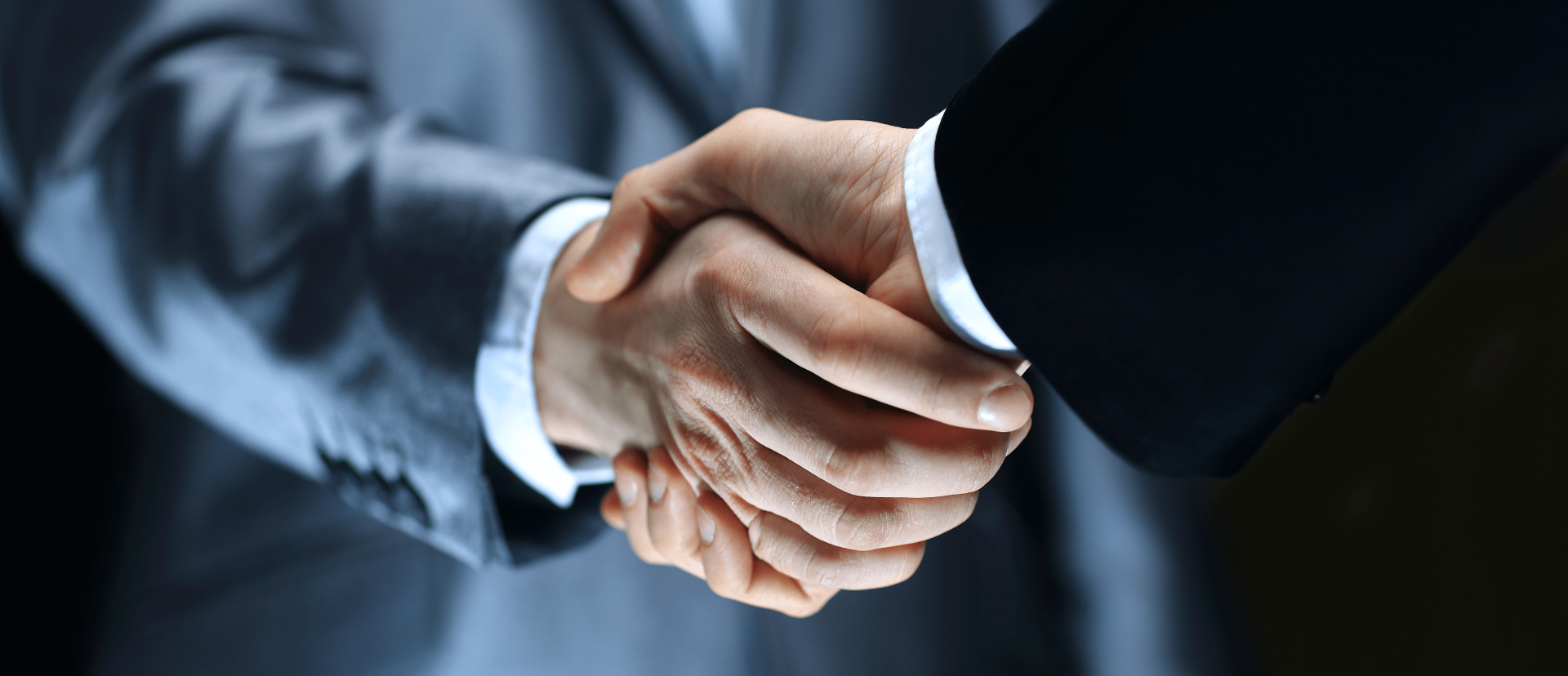 Partnerzy Biznesowi