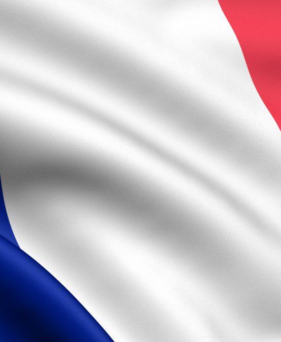 Francuski B1 semestralny