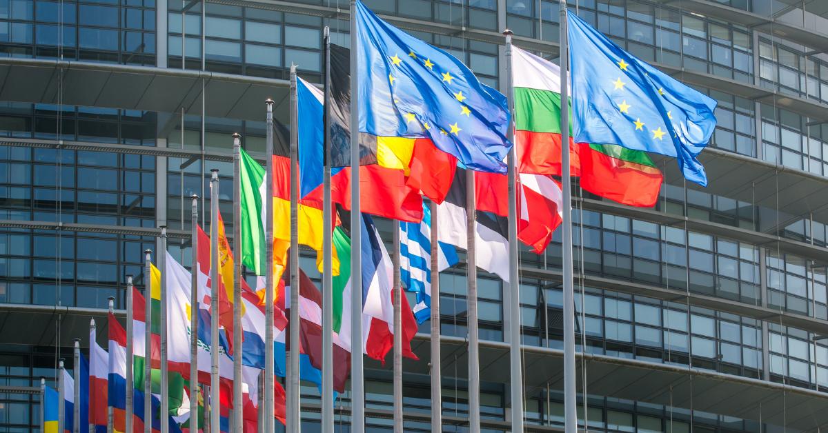 Szkoła Europejska 2021 – rekrutacja doprogramu